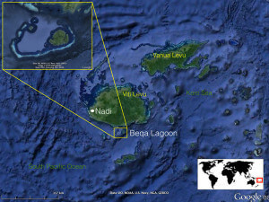 Map of Fiji and Beqa Lagoon for our coral triangle adventures snorkeling tour