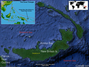 Kimbe Bay, Papua New Guinea is a destination on one of Coral Triangle Adventure snorkeling tours